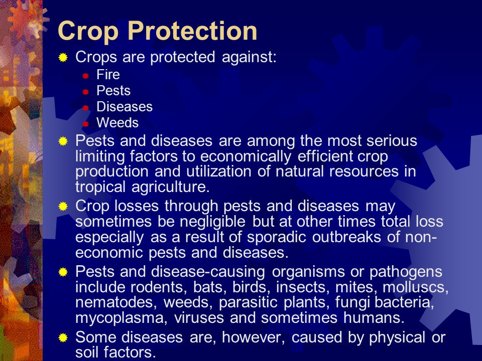 Crop Protection Crops are protected against: