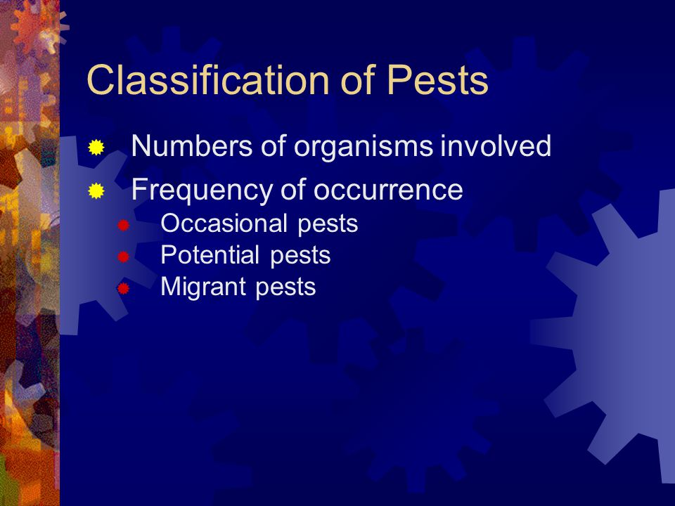 Classification of Pests
