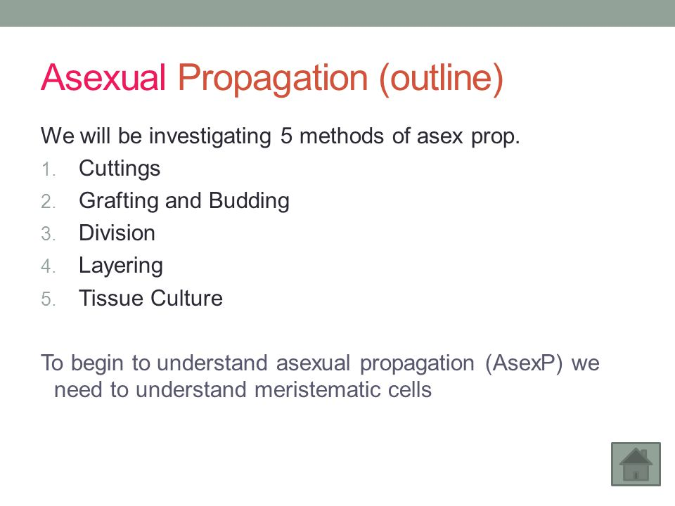 Sexual Plant Propagation Examples