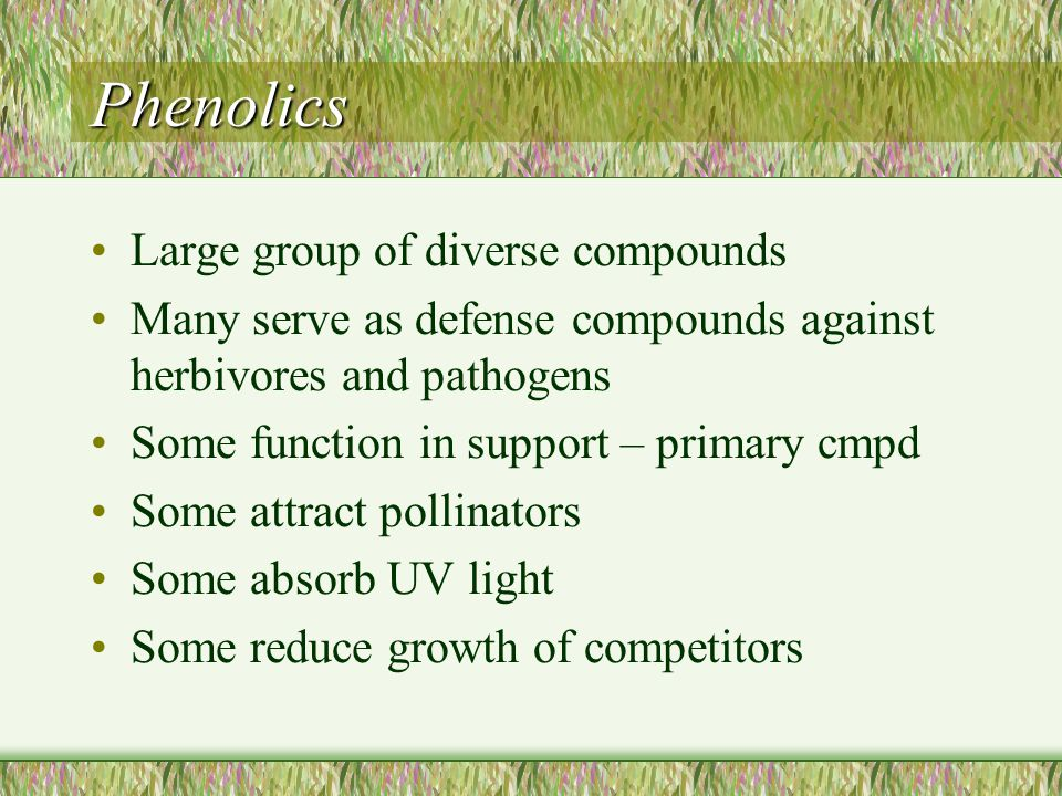classification of secondary metabolites in plants pdf