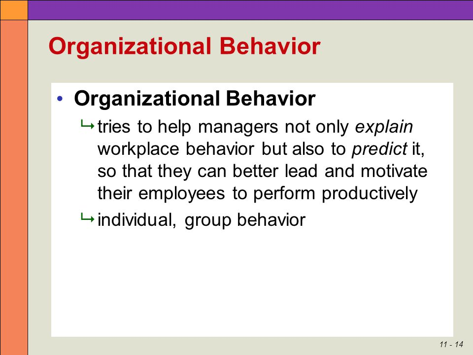 Individual behavior in organization