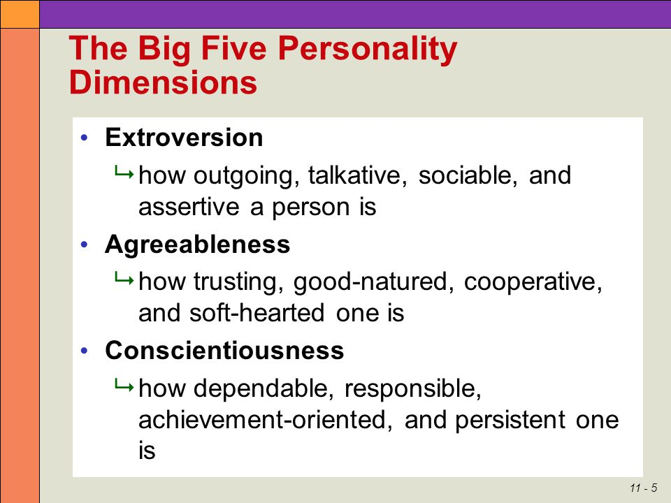 Managing Individual Behavior - Personality Type