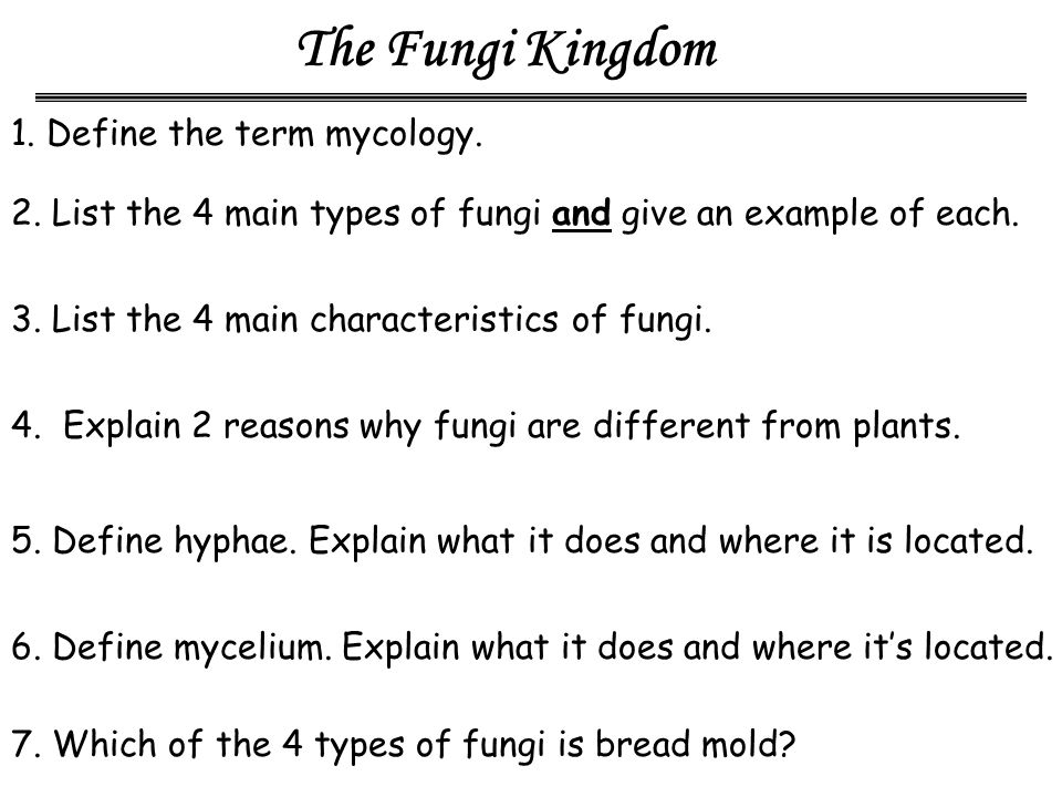 p5 explain the characteristics of the Classification of microorganisms - taxonomy, many characteristic features are used in classifying and identifying microorganisms in general, these characteristic features have been divided into two major categories such as classical and molecular characteristics.