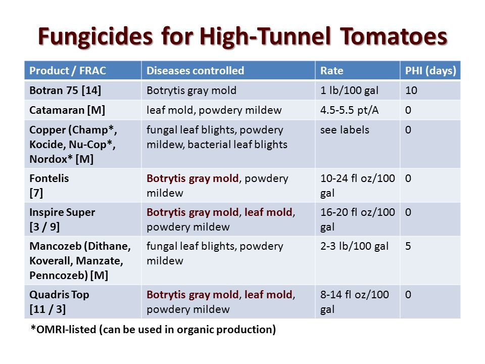 Fungicides for High-Tunnel Tomatoes