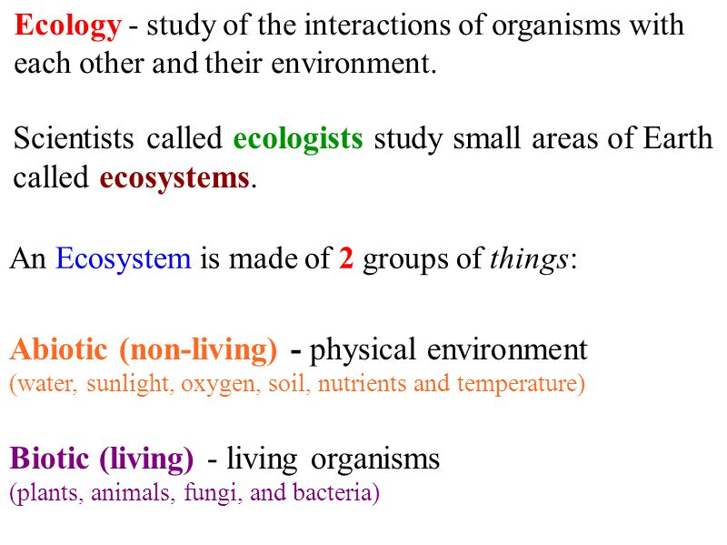 Abiotic (non-living) - physical environment