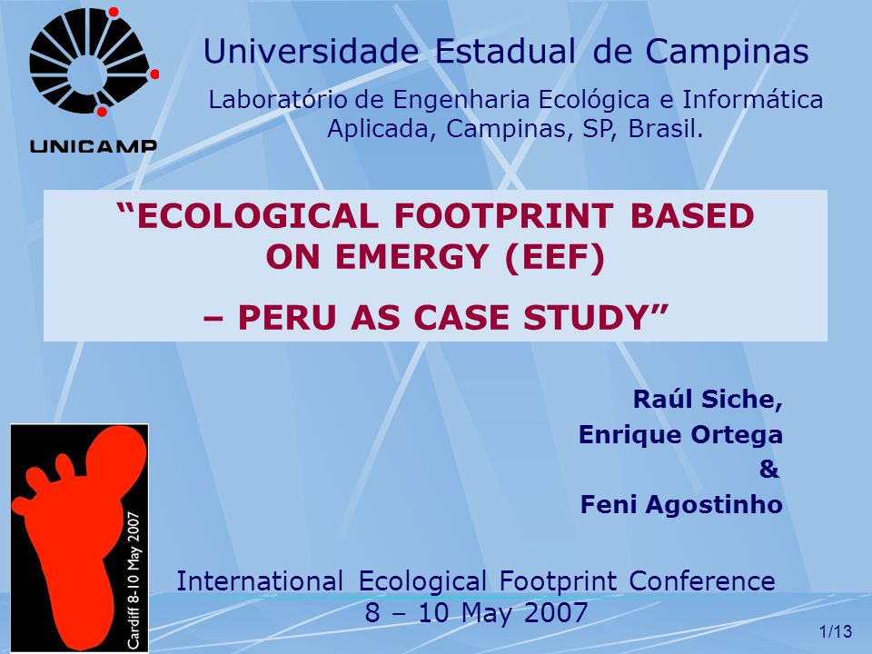 ECOLOGICAL FOOTPRINT BASED ON EMERGY (EEF)
