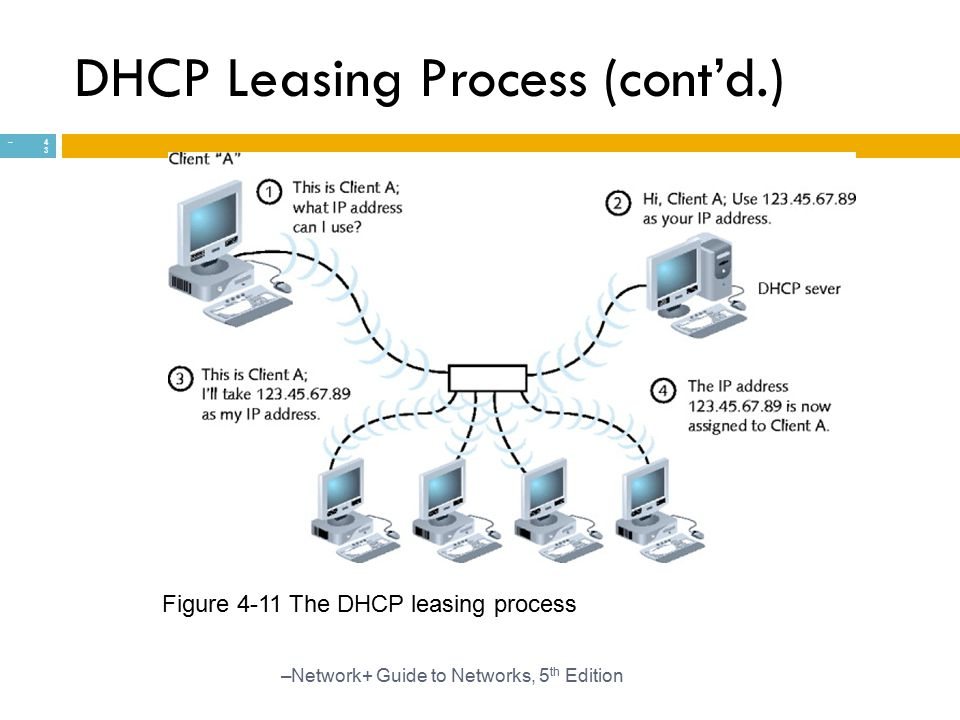 DHCP Leasing Process (cont'd.)