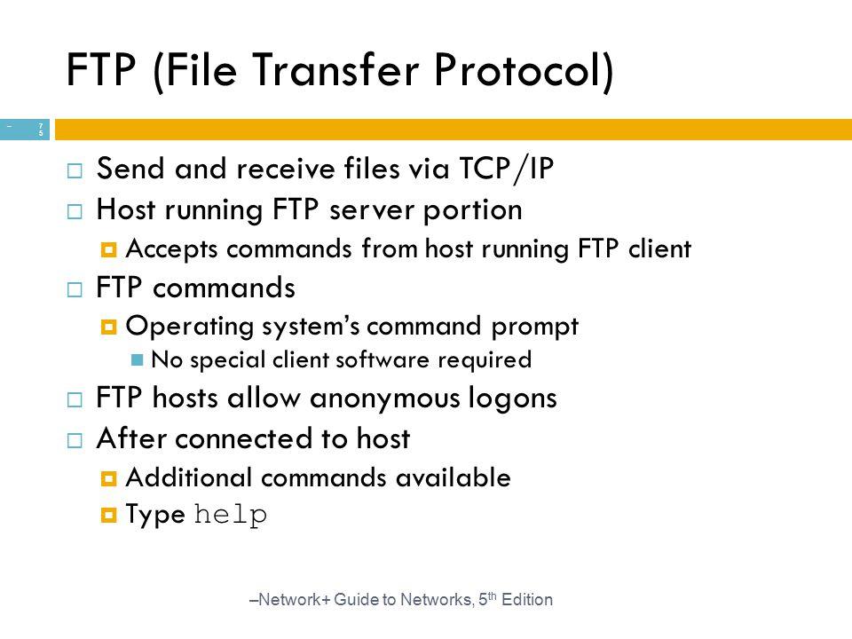 FTP (File Transfer Protocol)