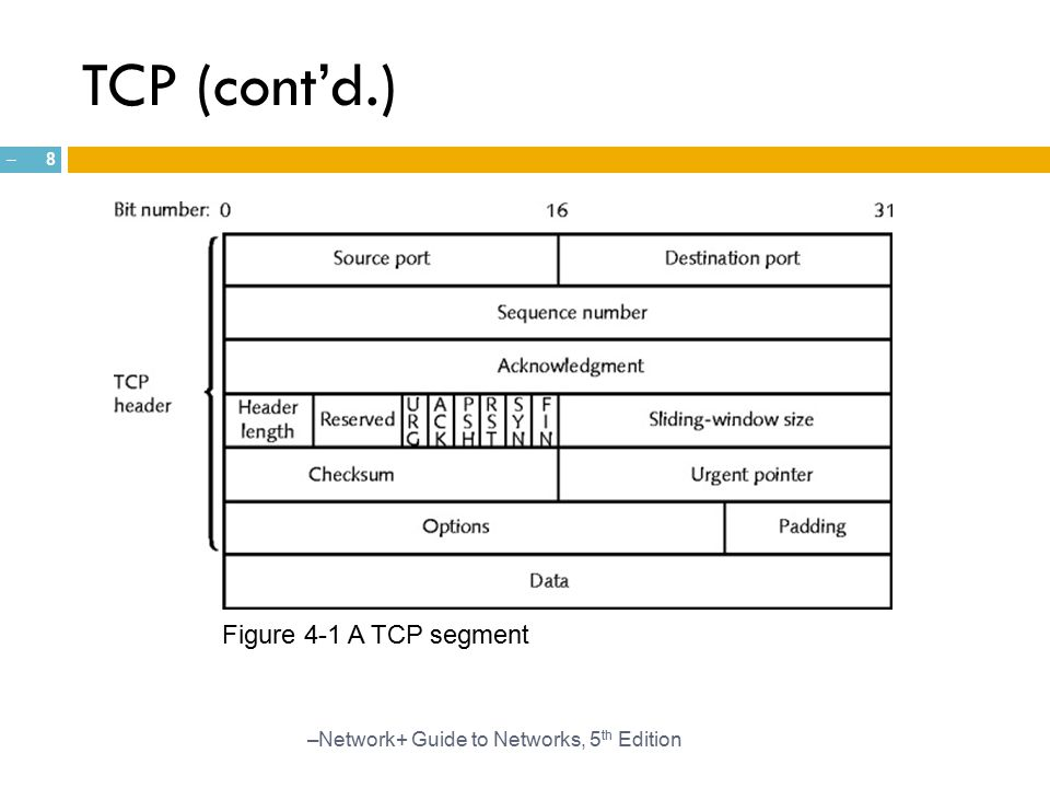 TCP (cont'd.) Figure 4-1 A TCP segment