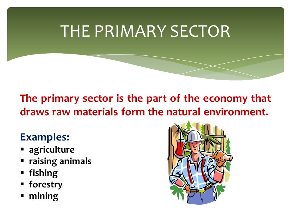primary sector of economy The primary sector is crucial to new zealand's economy and encouraging  engagement and interaction from people interested in working within it is critical  to.