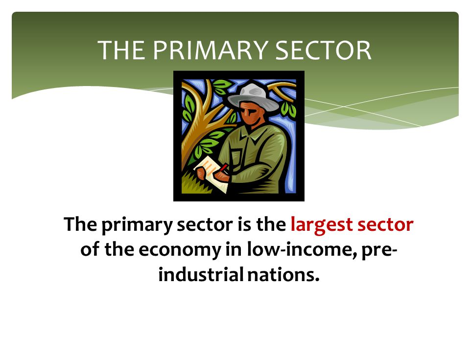 Primary sector of the economy