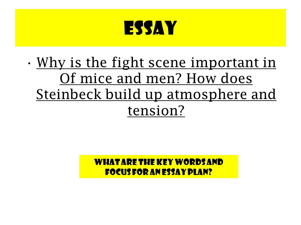 why is the fight scene important in of mice and men and how does steinbeck build tension and atmosph Of mice and men summary and analysis of chapter two  may be, he will be  sorry if he picks a fight with lennie, who is incredibly strong  steinbeck often  uses a single room as a setting for a scene, as the bunk  this stage technique  also allows steinbeck to build tension quickly without exposition.
