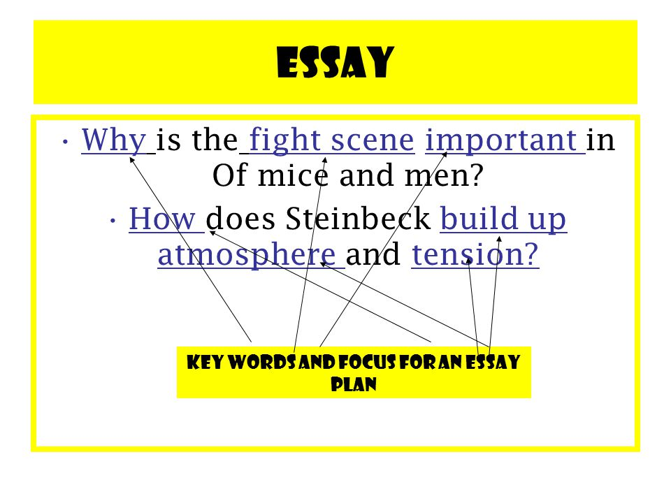 battle scene essays Braveheart assignment what makes braveheart, for you, a best ever movie you may wish to refer to the film s narrative, mis-en-scene, representations.