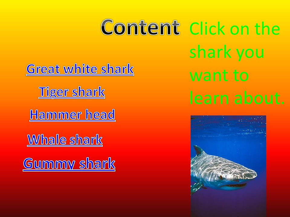 Content Click on the shark you want to learn about. Gummy shark