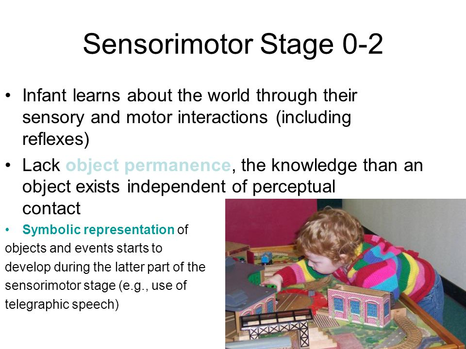 Developmental Psychology - Ppt Download