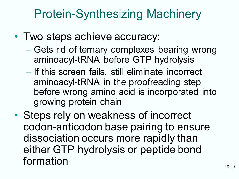 Molecular Biology Fifth Edition Ppt Download - 18 proofreading fails