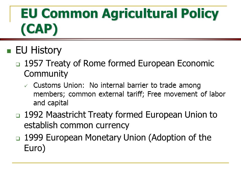 The Common Agricultural Policy - Essay Example