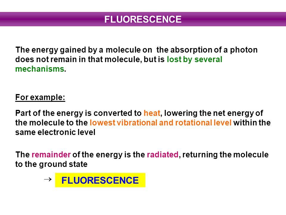 FLUORESCENCE FLUORESCENCE