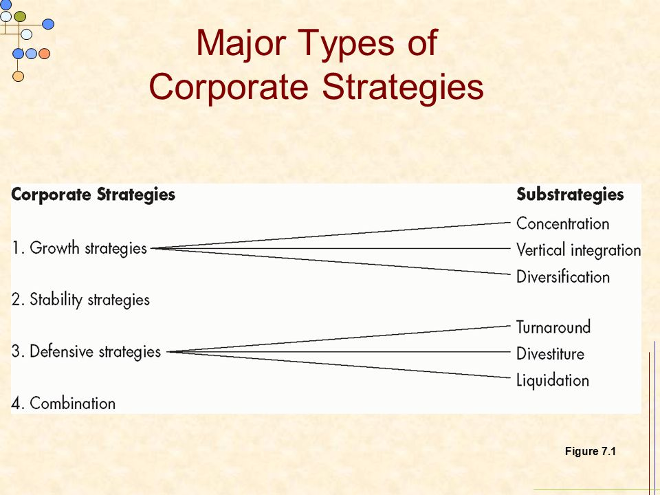 types of business growth strategies pdf