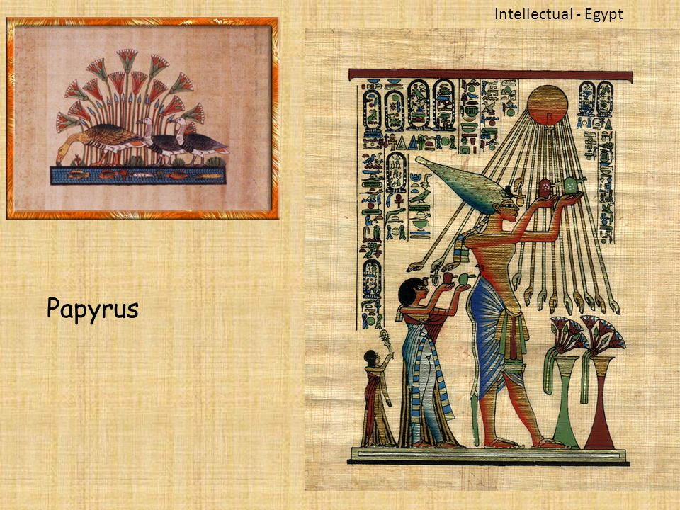 intellectual system in egypt ir mesopotamia History of mesopotamia was characterized by numerous invasions and conquests which also indicate that the feudal system became the predominant social and political system in mesopotamia the ancient world by the 14th century bc and successfully competed with egypt even under.