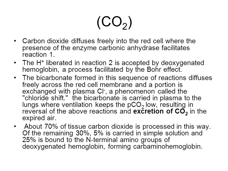 (CO2) Carbon dioxide diffuses freely into the red cell where the presence of the enzyme carbonic anhydrase facilitates reaction 1.