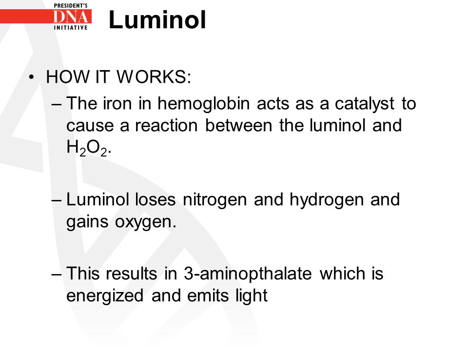 Luminol HOW IT WORKS: The iron in hemoglobin acts as a catalyst to cause a reaction between the luminol and H2O2.