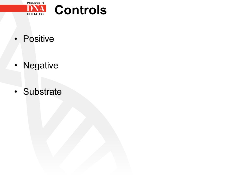 Controls Positive Negative Substrate
