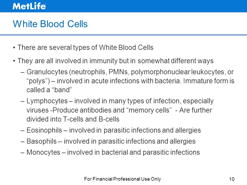 Understanding Complete Blood Counts The ABCs of CBCs - ppt download
