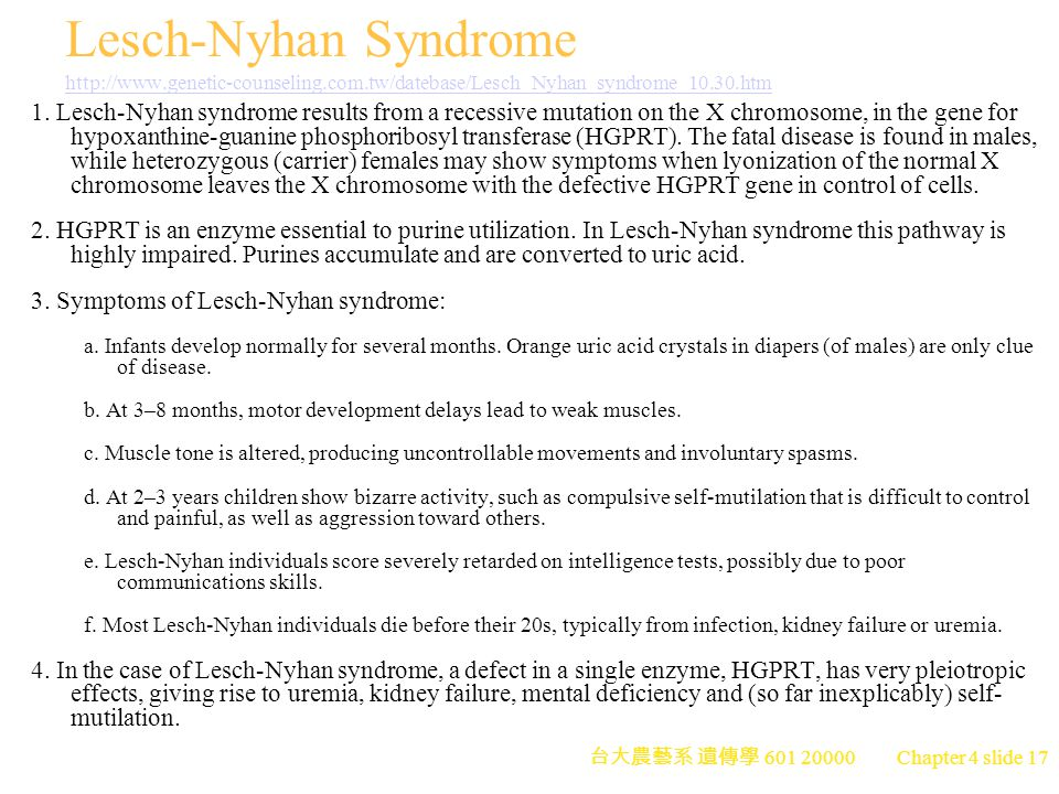 lesch nyhan syndrome research paper