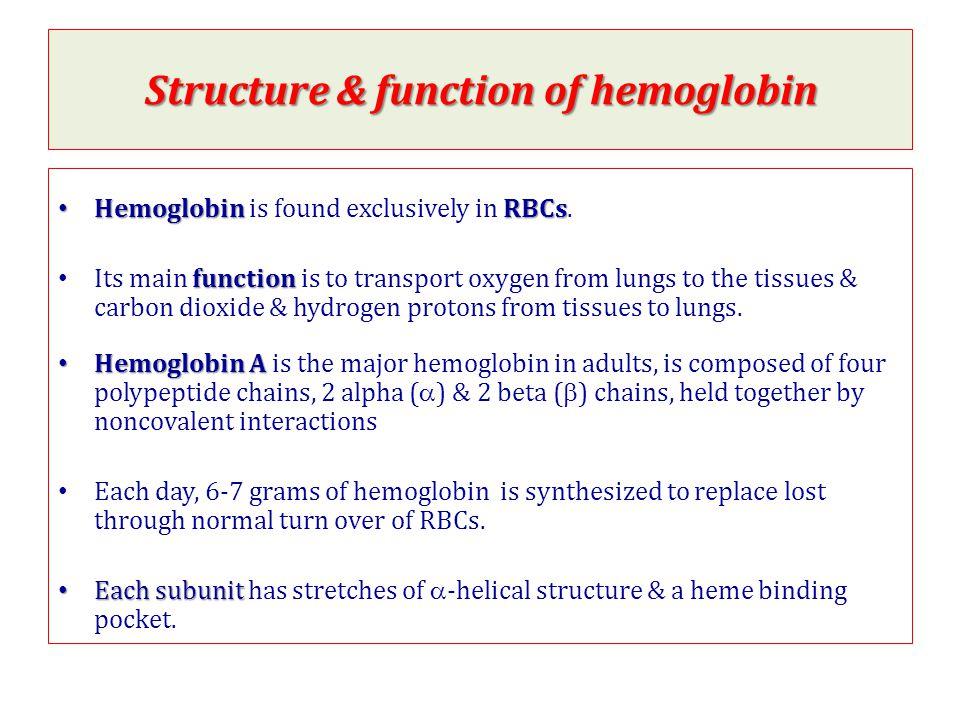 Quaternary Structure Of Hemoglobin