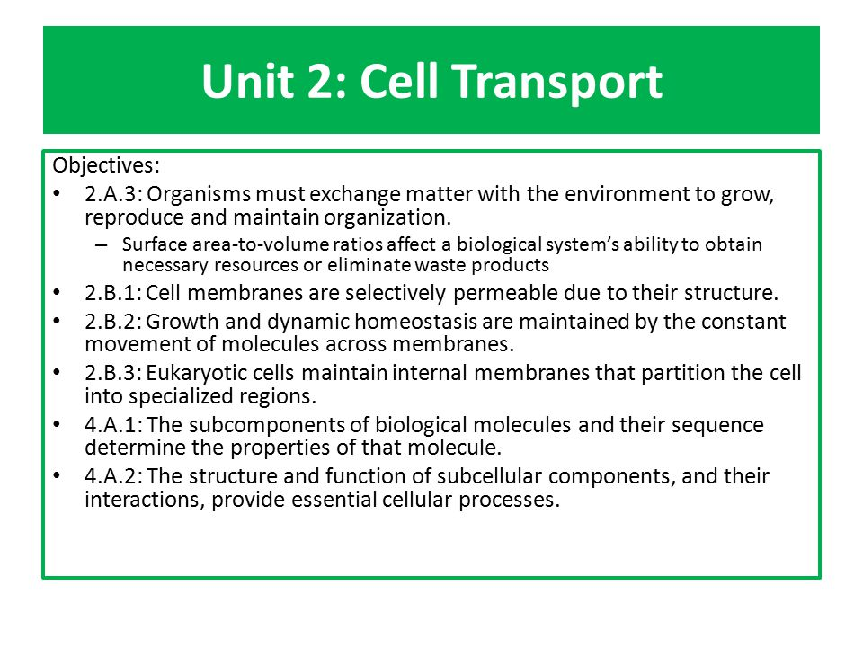 Unit 2 Cell Transport Objectives Ppt Download