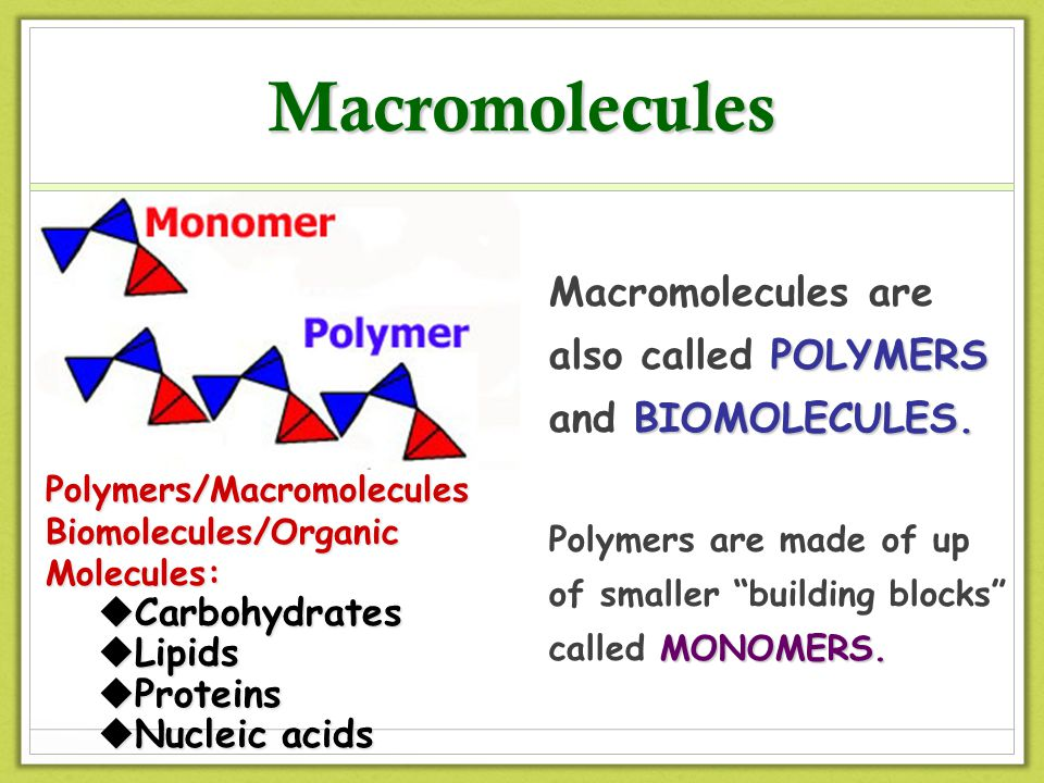 a description of polymers large molecules composed of smaller molecules called monomers Biological polymers are large molecules composed of many similar smaller molecules linked together in a chain-like fashion the individual smaller molecules are called monomers.