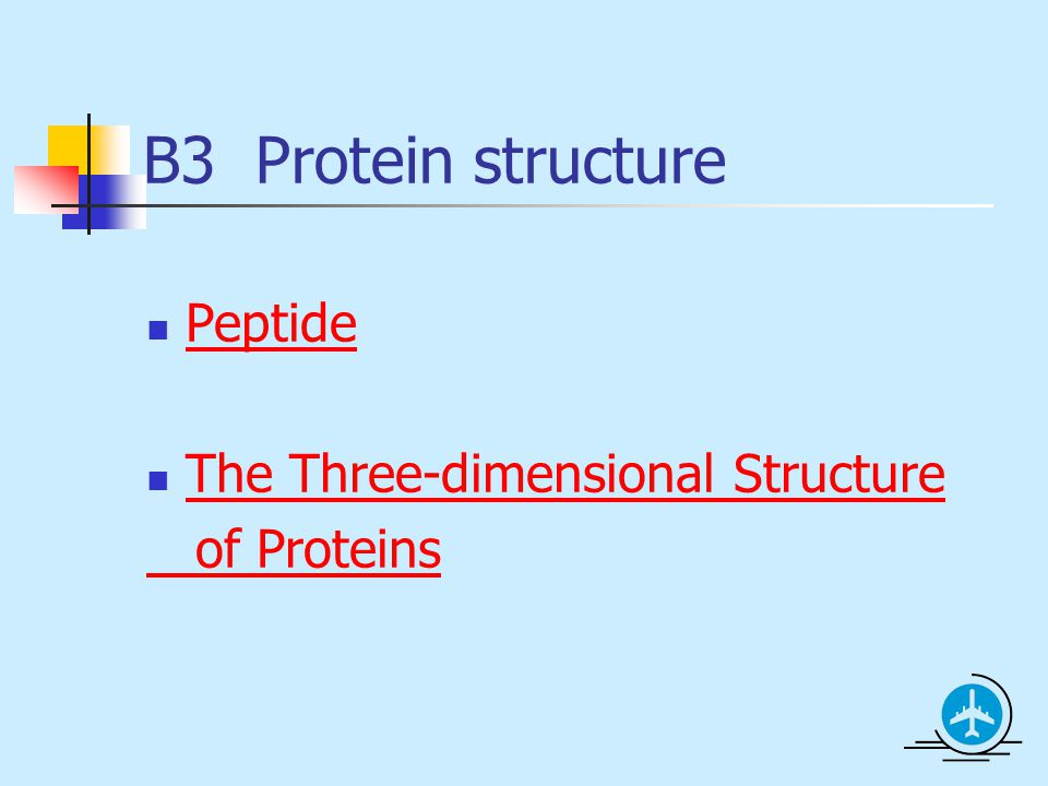 three dimensional structure of proteins The three-dimensional shape of a protein is determined by its primary structure the order of amino acids establishes a protein's structure and specific function the distinct instructions for the order of amino acids are designated by the genes in a cell.