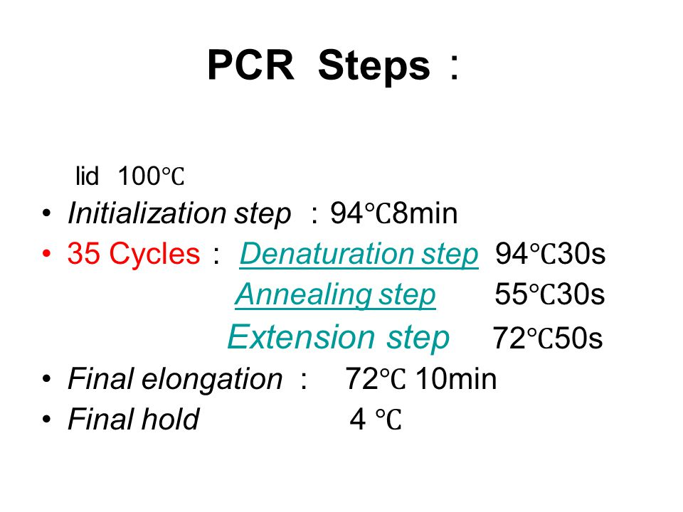 PCR Steps: Initialization step :94℃8min
