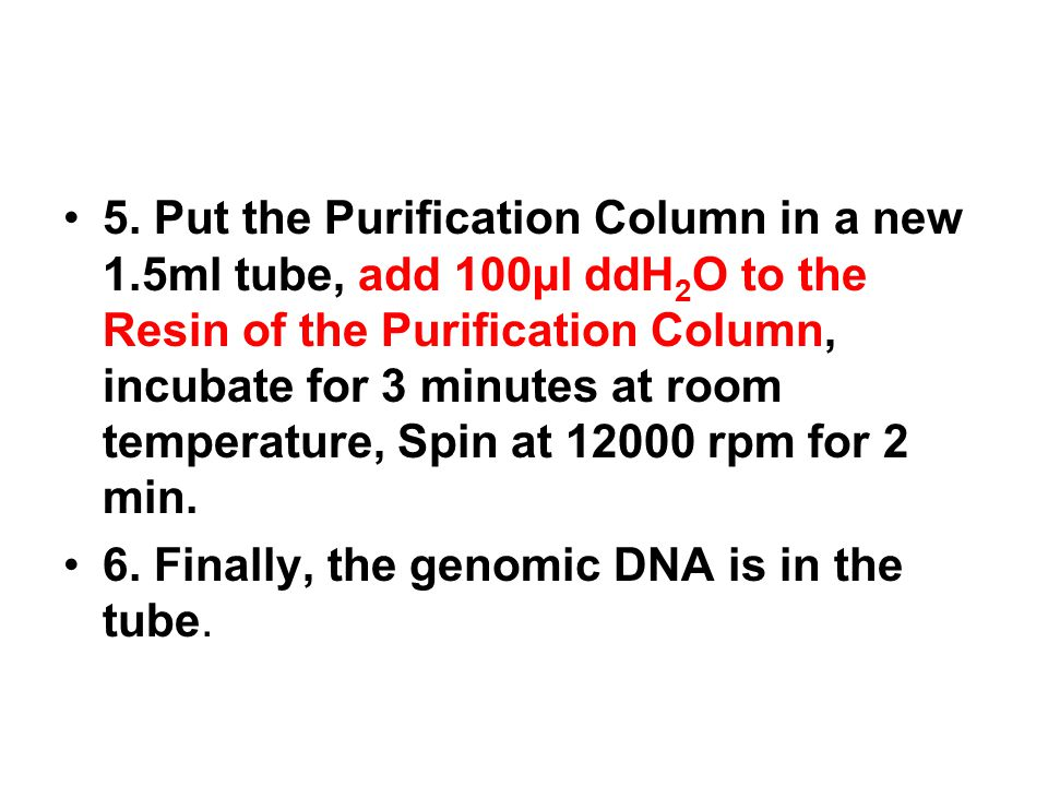 5. Put the Purification Column in a new 1