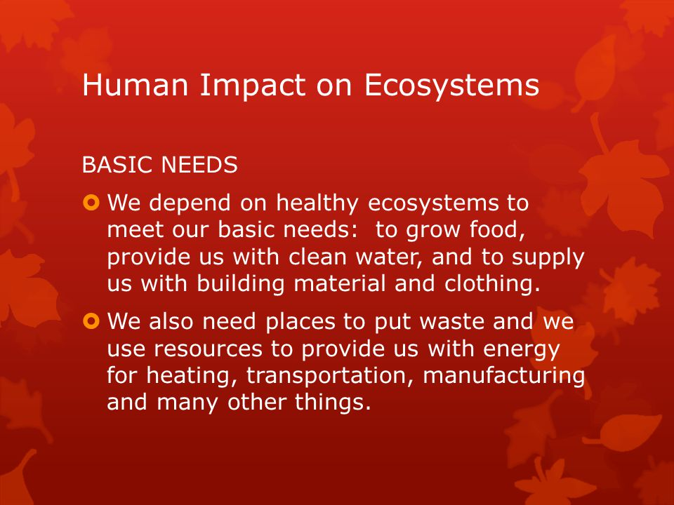 human impact on the environment pdf