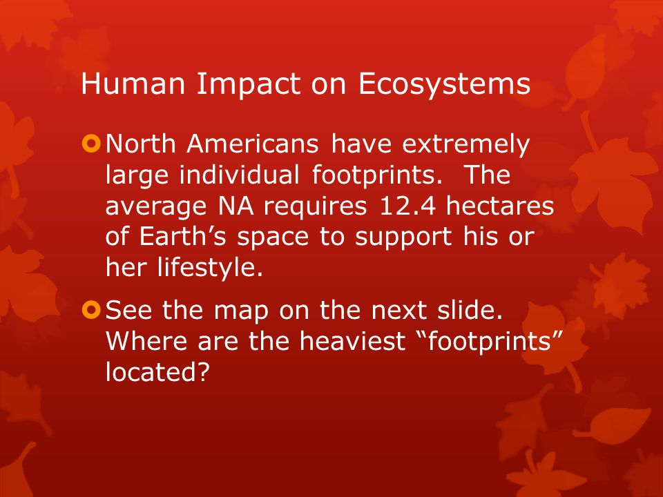 influence of location on ecology views Climate patterns affect where communities live in the biosphere  this view of  biomes arranged by their location on the planet allows us to see.