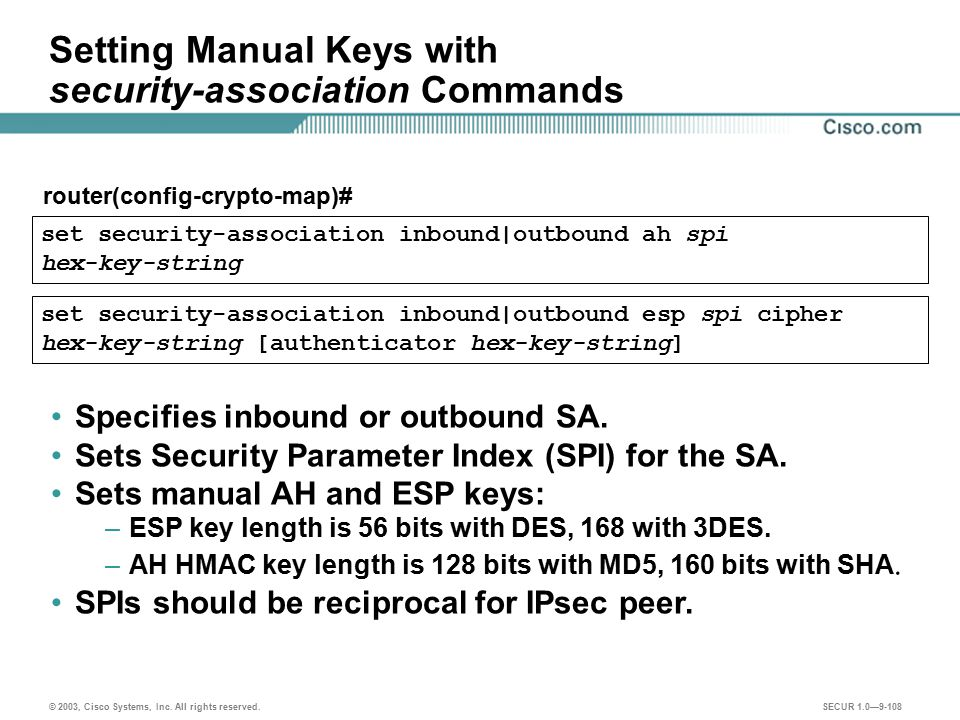 Setting Manual Keys with security-association Commands
