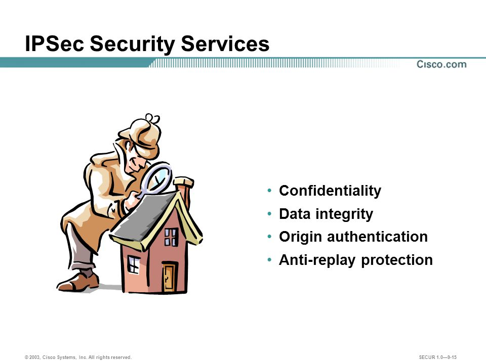 IPSec Security Services