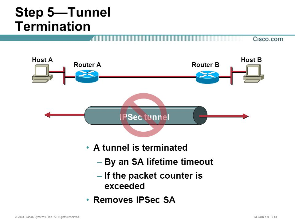 Step 5—Tunnel Termination