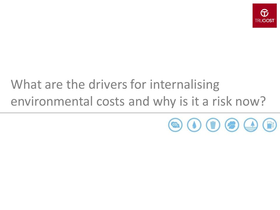 What are the drivers for internalising environmental costs and why is it a risk now
