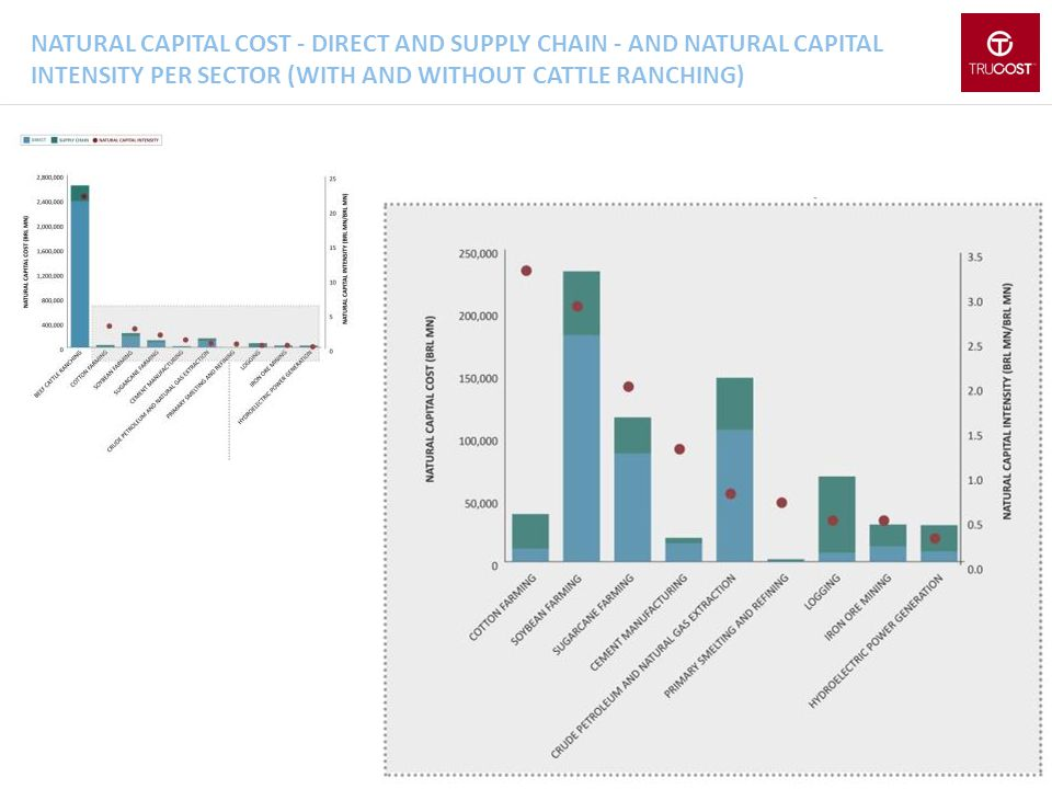 Natural capital cost - direct and supply chain - and natural capital intensity per sector (WITH AND WITHOUT CATTLE RANCHING)