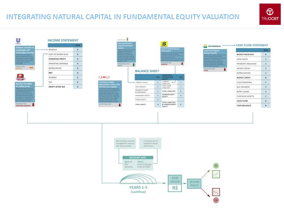 INTEGRATING NATURAL CAPITAL IN FUNDAMENTAL EQUITY VALUATION