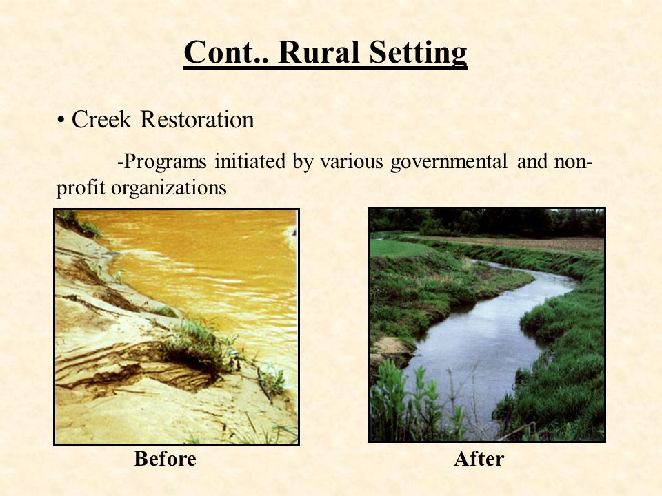 Cont.. Rural Setting Creek Restoration