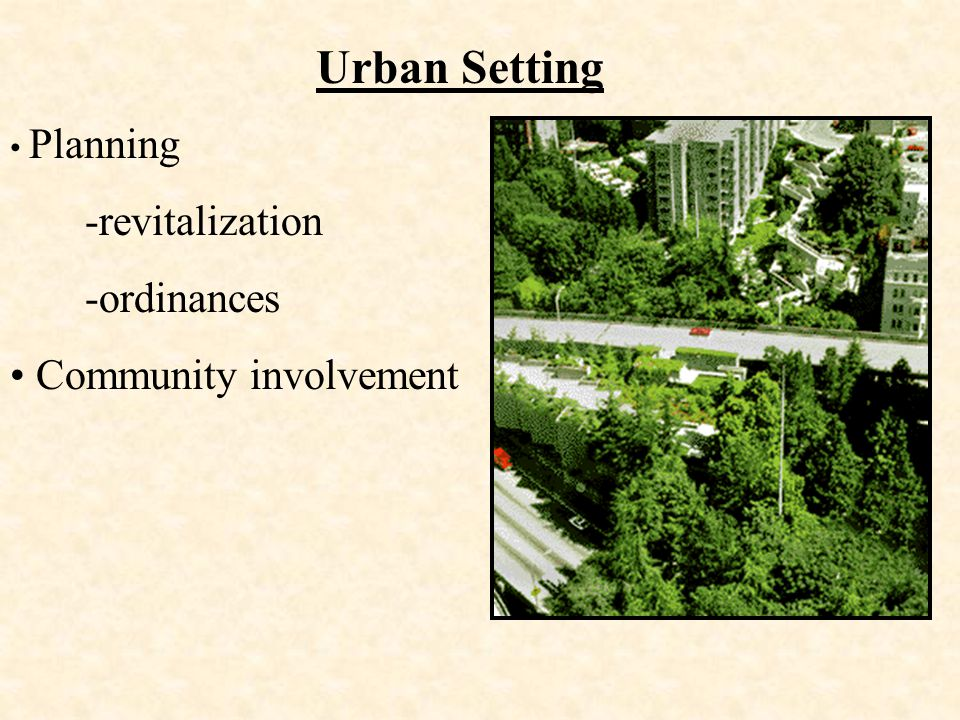 Urban Setting -revitalization -ordinances Community involvement