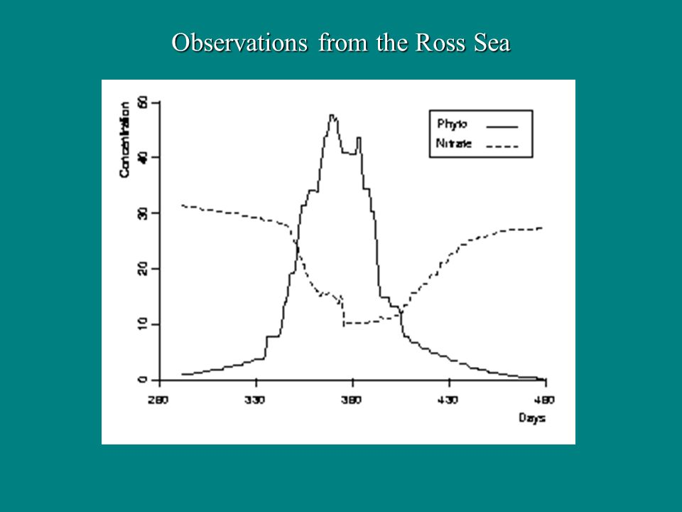 Observations from the Ross Sea