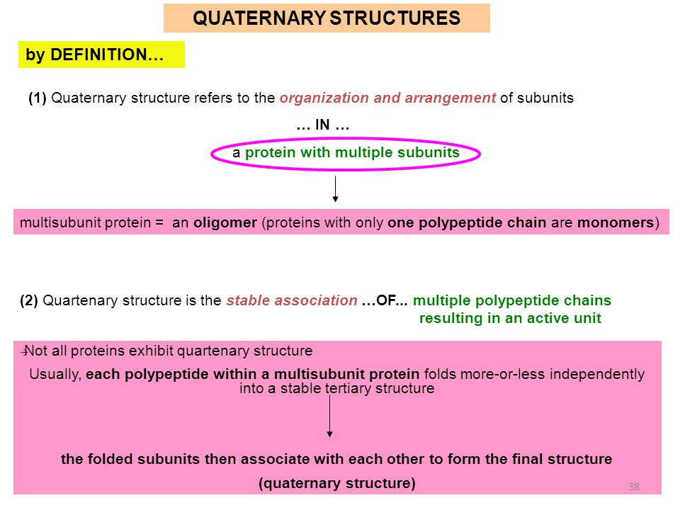 QUATERNARY STRUCTURES (quaternary structure)