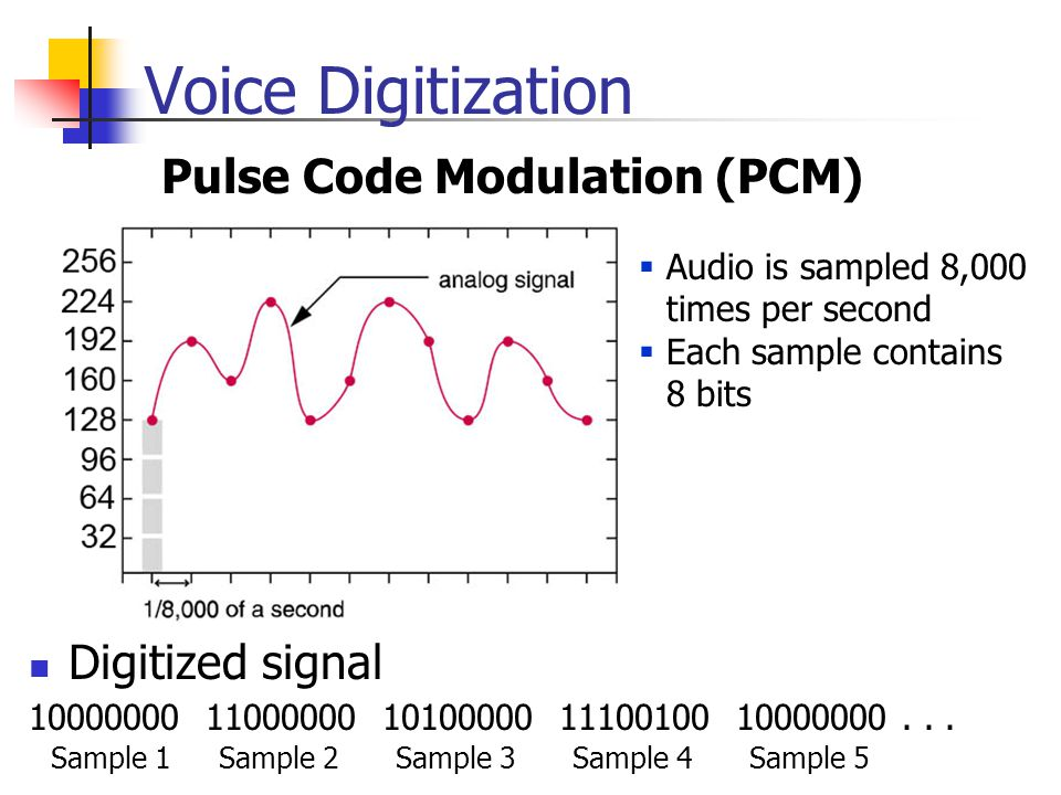 Voice Digitization Pulse Code Modulation (PCM) Digitized signal