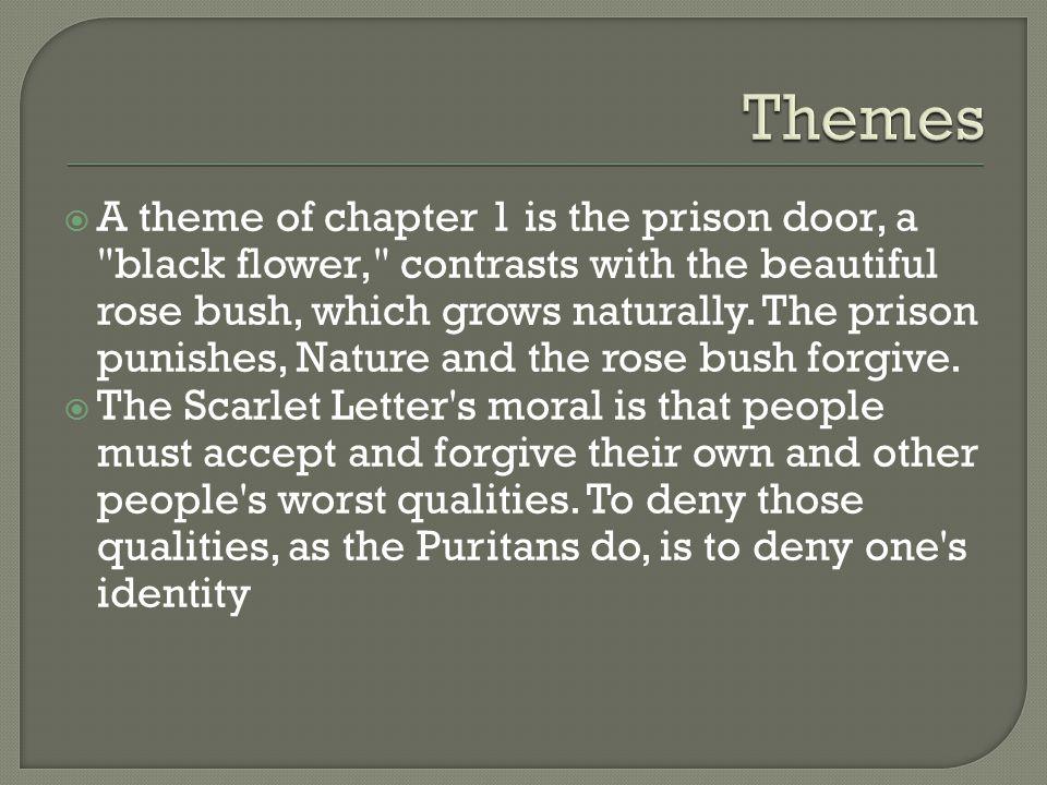 Identity theme in Scarlet letter Essay