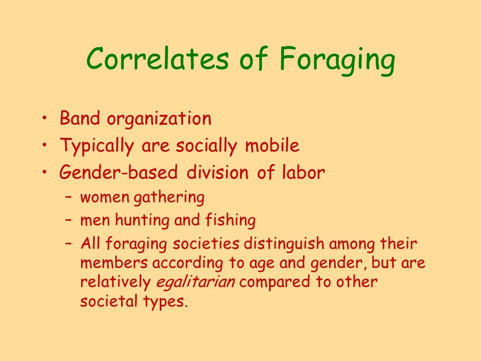 foraging societies